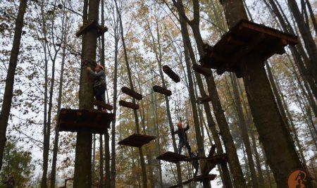 Preles, účelové cvičenie v korunách stromov